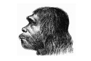 День неандертальца: научной общественности впервые представили неандертальца