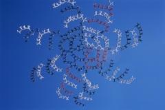 Поставлен рекорд в воздушной акробатике — 357 парашютистов построили формацию