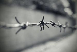 Принят Закон «О реабилитации репрессированных народов»