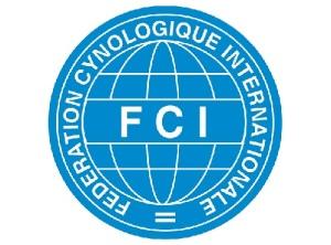 Основана Международная федерация кинологов