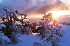 Емелин день, Емельян зимний