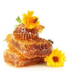Савватий Пчельник