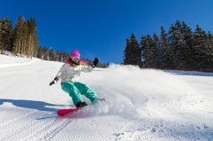 Сноуборд — состязания сноубордистов включены в программу Олимпийских игр