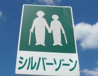 Не в каждой стране есть пешеходная «серебряная зона» (Фото: С. Фукути, www.calend.ru)