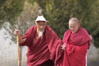 Буддийские монахи — кажется, они знают ответ на любой вопрос... (Фото: Pichugin Dmitry, Shutterstock)