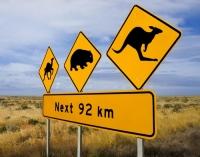 Вот такой знак можно встретить на дорогах Австралии