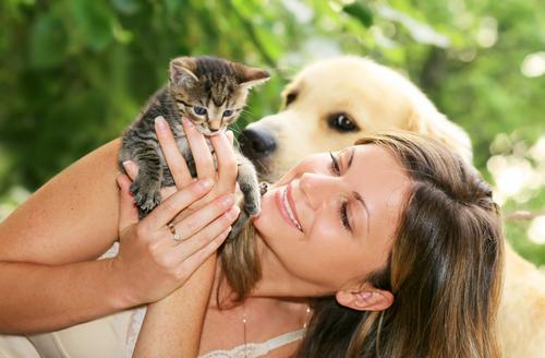 Россия прочно удерживает второе после США место в мире по численности домашних животных
