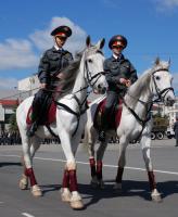 Полиция общественной безопасности