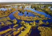 Река Припять