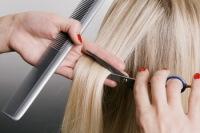 Выберите час и – в парикмахерскую! Фото: konstantynov, Shutterstock