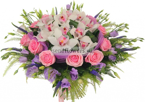 Заказ цветов amf розы сибири купить