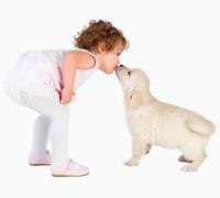 Уделите внимание домашним питомцам, сегодня день взаимодействия с животным миром. Фото: www.shutterstock.com