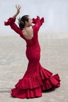 Сегодня фестиваль «¡Viva España!» снова собирает поклонников фламенко со всего мира (Фото: Darren Baker, Shutterstock)
