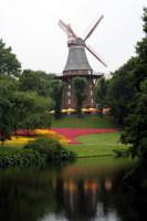 Значительную часть города занимают парки и скверы (Фото: lullabi, www.shutterstock.com)