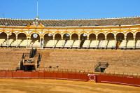Маэстранца – самое престижное место, где проводятся бои быков (Фото: nito, www.shutterstock.com)