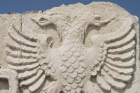 Символ Албании — орел (Фото: Ligak, Shutterstock)