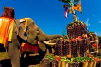 А слоны в Лампанге участвуют и в ярмарках (Фото: puwanai, www.shutterstock.com)