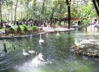 Парк Куюлу, известный своими лебедями и утками (Фото: Ankaralı Turgut, ru.wikipedia.org)