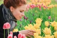 Согласно легенде, на дне тюльпана спрятано счастье… (Фото: YuliaPodlesnova, Shutterstock)