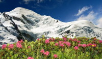 Прекрасная природа Шамони-Монблан… (Фото: Vaclav Volrab, Shutterstock)