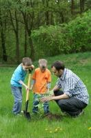В этот день дети и взрослые участвуют в массовых посадках деревьев (Фото: matka_Wariatka, Shutterstock)