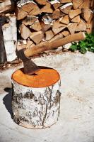 Заготовка дров была делом ответственным (Фото: Sergey Ryzhov, Shutterstock)