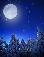 По звездам судили и о погоде, и о будущем урожае (Фото: Kuttelvaserova, Shutterstock)