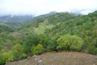 Природа Дилиджана (Фото: ru.wikipedia.org)