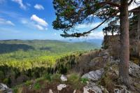 Высокогорное плато Лаго-Наки (Фото: Krivosheev Vitaly, Shutterstock)