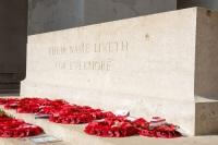 Красные маки - символ Дня поминовения (Фото: photoiconix, Shutterstock)
