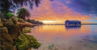 Swan River, ��� ��������� ����, � ������ �������� ��������� � � ���� ��� (����: Salehuddin, Shutterstock)