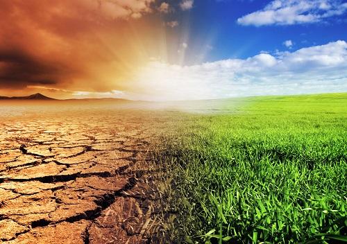 Картинки по запросу Всемирный день борьбы с опустыниванием и засухой (World Day to Combat Desertification and Drought)