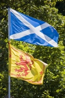 Флаг Шотландии и Королевский штандарт (Фото:Brendan Howard, Shutterstock)