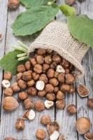 По приметам, дождь в этот день предвещал, что в лесу будет много орехов (Фото: HandmadePictures, Shutterstock)