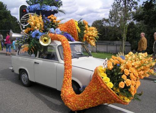 Какие цветы сажают осенью на даче фото и название 70