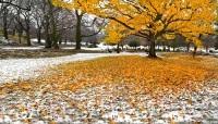 Если выпадал первый снег, зиму ждали на Михайлов день (Фото: Artens, Shutterstock)