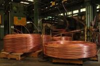 Сегодня кабельная промышленность в России насчитывает примерно 350 предприятий (Фото: polat, Shutterstock)