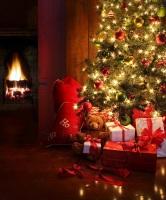 Главная традиция праздника — устанавливать в домах наряженное дерево ели (Фото: Sandra Cunningham, Shutterstock)