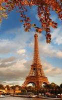 Эйфелева башня - самое известное творение инженера (Фото: Samot, Shutterstock)