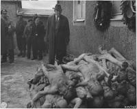 Тела жертв Холокоста (Фото: wikipedia.org)