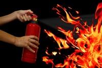 Пусть огнетушитель будет в вашем хозяйстве, но им не придется воспользоваться, чем наоборот... (Фото: sezer66, Shutterstock)