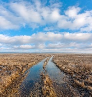 Вешние воды заливают поля, дворы, дороги... (Фото: Pavelk, Shutterstock)