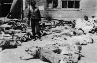 Одна из страшных фотографий, сделанных американцами в Бухенвальде (Фото: wikipedia.org)