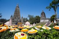 Паломники со всего мира приходят в Бодх-Гайю, чтобы принять участие в празднике (Фото: surassawadee, Shutterstock)