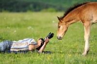 Сегодня можно поздравить с профессиональным праздником всех фотографов (Фото: Volodymyr Burdiak, Shutterstock)