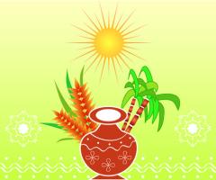 Понгал — праздник урожая в Индии